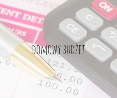 domowy budżet - ilustracja