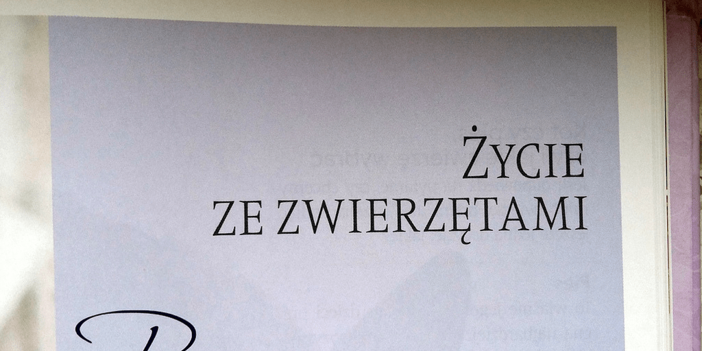 zwierzeta-listopad-z-ppd