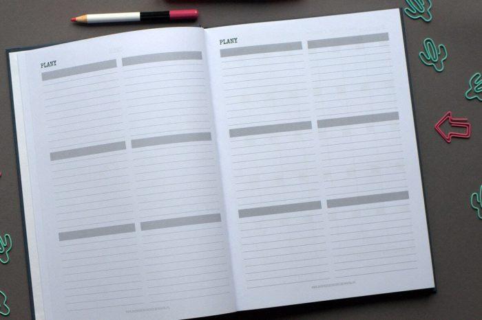 planer 2018 - plany - dobrze zorganizowana