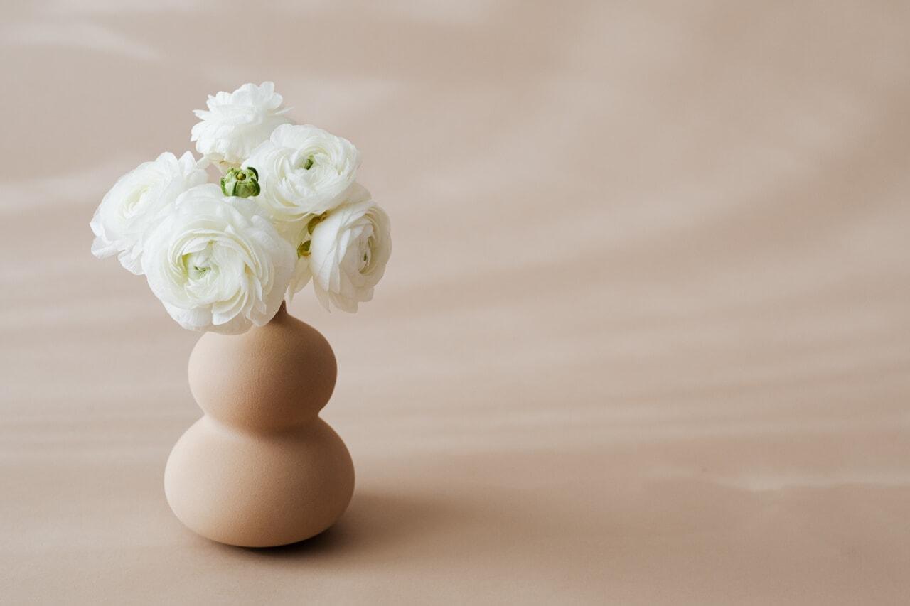 kwiaty wwazonie - ilustracja doartykułu